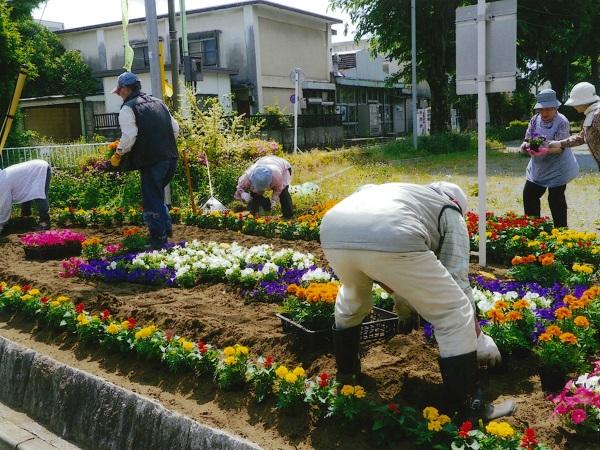 春の花苗植栽活動